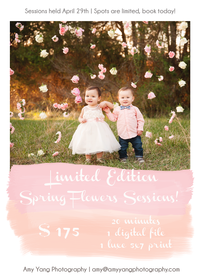 Limited Edition Spring Flowers Sessions