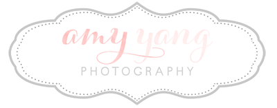 Amy Yang Photography | Charlottesville, VA Maternity, Newborn, Children, and Family Photographer logo